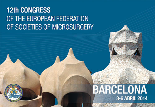 12TH Congress of The European Federation Of Societies of Microsurgery12TH Congress of The European Federation Of Societies of Microsurgery