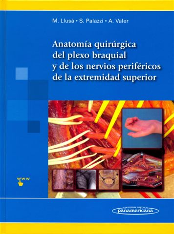 Anatomía Quirúrgica del plexo braquial y nervios periféricos de la extremidad superiorSurgical Anatomy of the brachial plexus and peripheral nerves of the upper extremity